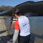 CONTROLO REGIONAL DE VELOCIDADE Canoagem Canoagem Internacional Divulgação Douro Canoa Clube 4
